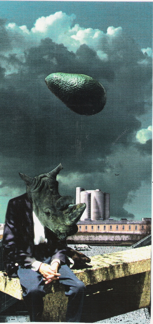 rhinoceros 1994